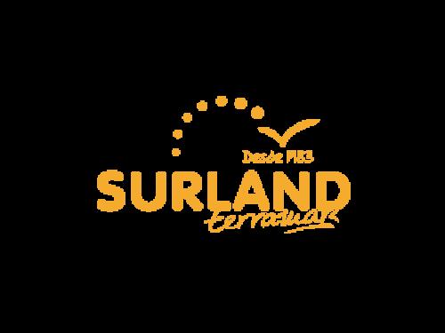 Surland